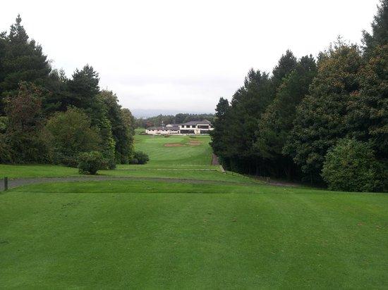 Lisburn Golf Club: Par 3, 18th from tee