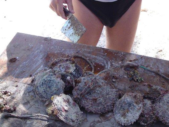 Pearl Havaiki: Lotteria delle perle. Attenzione...