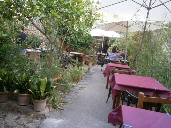 Bodega Can Mora des Vi : The courtyard