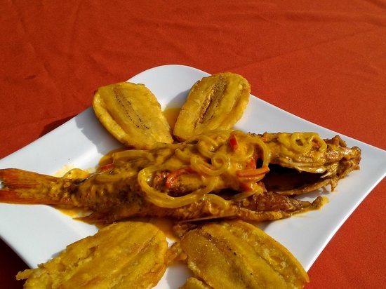 Samdix Place Caribean Food: pez  en salsa  caribaña
