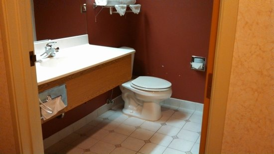 BEST WESTERN PLUS Des Moines West Inn & Suites: Bathroom