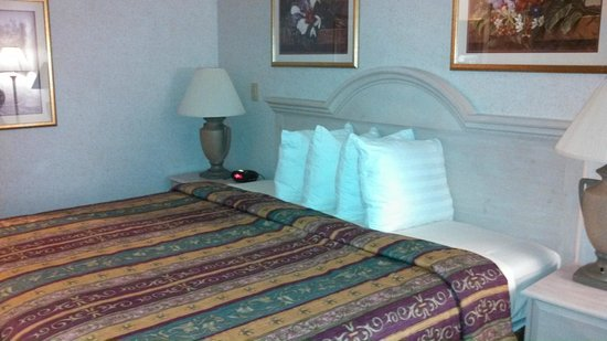 BEST WESTERN PLUS Des Moines West Inn & Suites: King-size bed