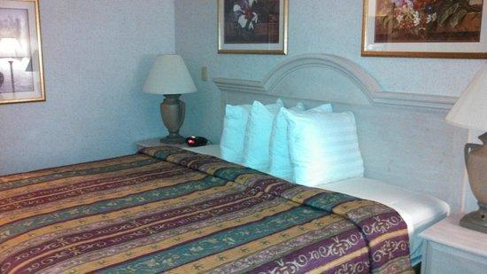 Best Western Plus Des Moines West Inn & Suites: King-size bed
