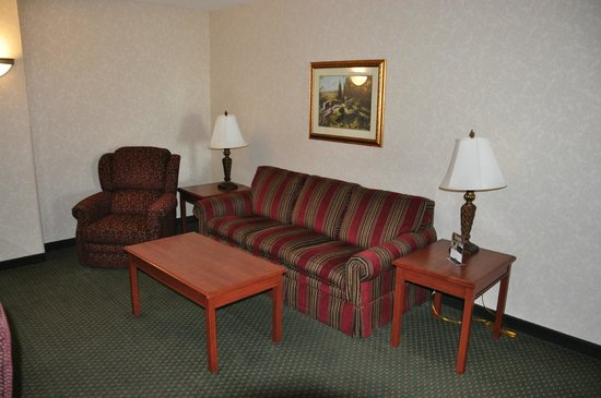 Drury Inn & Suites Forest Park: Living room