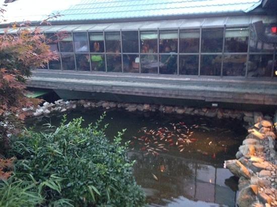 Exterior statues picture of mt fuji restaurant hillburn for Koi pond york