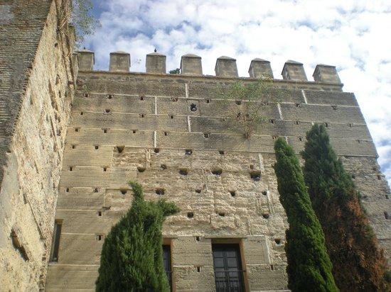 Alcázar de Jerez de la Frontera: Alcazar de Jerez