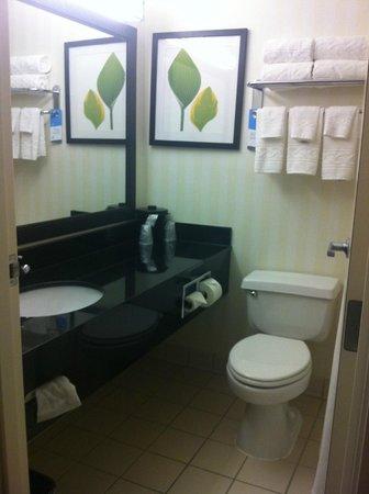 Fairfield Inn & Suites Minneapolis-St. Paul Airport: Bathroom