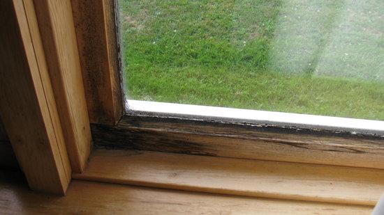 Eastland Motel : fenêtre avec moissisure