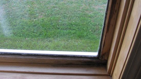 Eastland Motel: Autre côté de la fenêtre (encore moisissure)