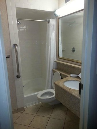 Holiday Inn Boston Brookline: squeeze by toilet to get shower