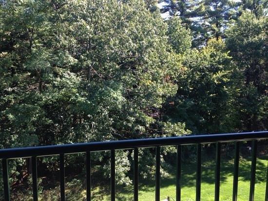 Wilderness Resort: 682 top floor wooded view!
