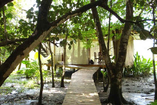 Ostional Turtle Lodge : path to the common area. private room with kiitchen is on top.
