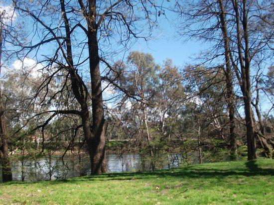 Australia Park Motel : Riverside walk