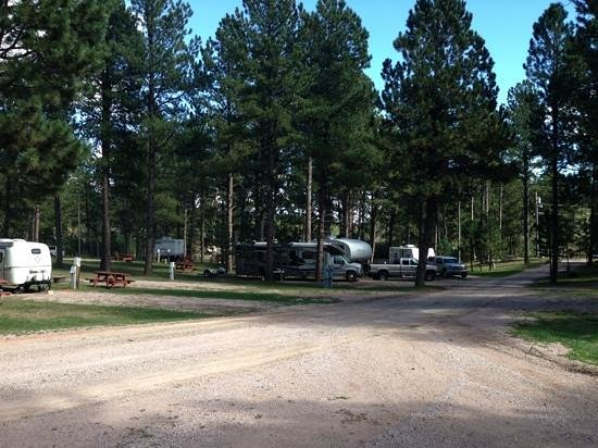 Fort Welikit Family Campground: Fort Welikit Campground, Custer South Dakota