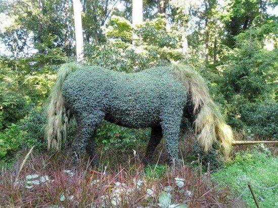 Atlanta Botanical Garden: Unicorn