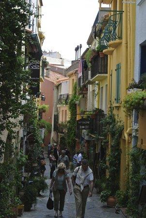 Hotel Le Mas des Citronniers: Street scene of Collioure near Hotel