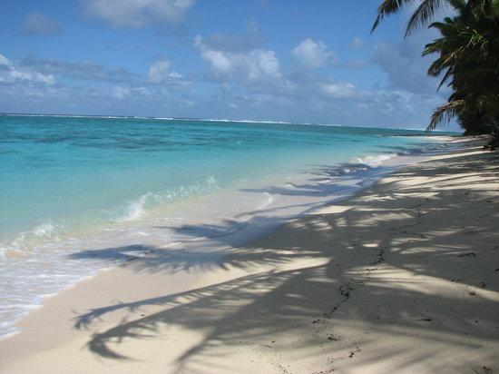 Cooks Bay Villas: beautiful beach