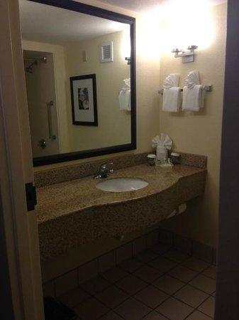 Hilton Garden Inn Orlando Airport: Bathroom sink