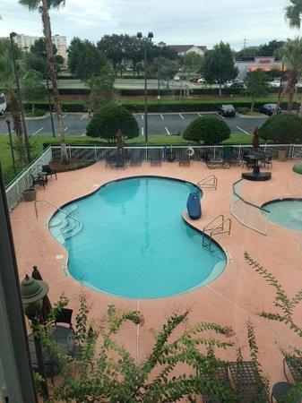 Hilton Garden Inn Orlando Airport: pool view