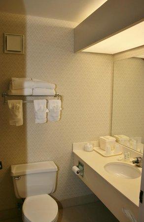 BEST WESTERN Maple City Inn : Bathroom