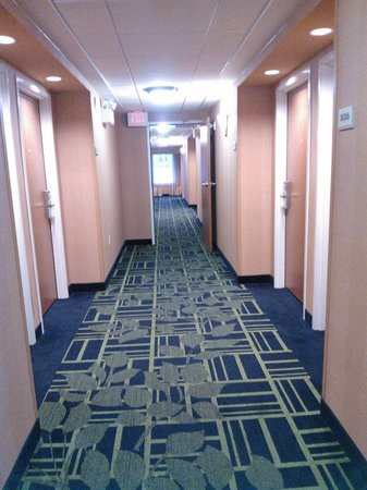 Fairfield Inn & Suites San Antonio Downtown/Alamo Plaza: hallway
