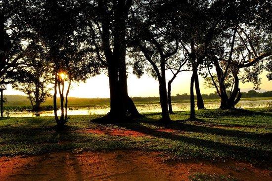 โรงแรมชายา วิลเลจ ฮาบารานา: Evening at hotel garden
