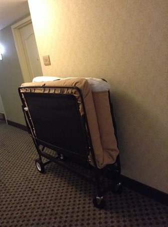 Hilton Garden Inn Charlottesville: This cot was on the other side of my door during my one night stay. It was never taken away.