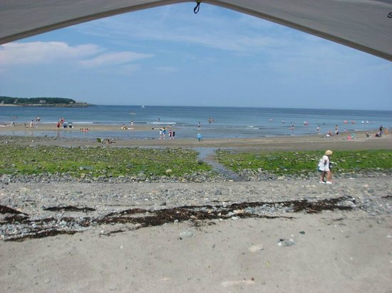 Katahdin Inn on the Beach: Short Sands Beach at Low Tide