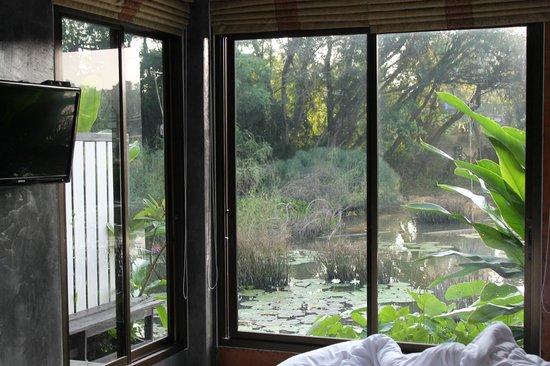 Huansaikaew Resort: Imagen al despertarse jajaja