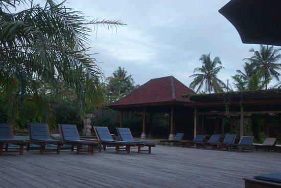 Bhuwana Ubud Hotel: プール