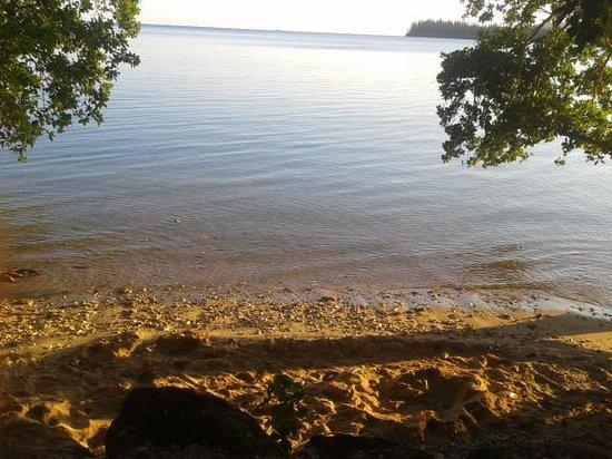 Kanua Tera Ecolodge: notre vue de notre bungalow!