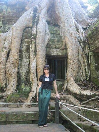 Angkor Archaeological Park: близко не подойти-да и не хотелось-страшновато-они как живые