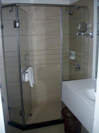 Jiari International Hotel: bathroom