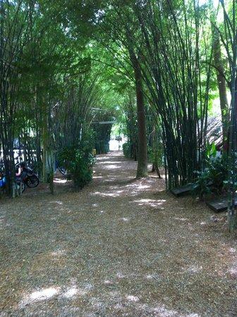 Milky Bay Resort: Hotel Grounds