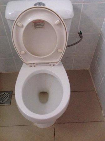 Telang Usan Hotel Kuching: Stain toilet bowl