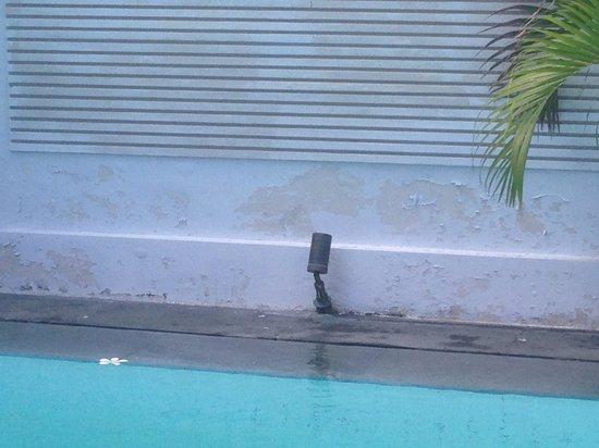 Nunia Boutique Villas: Mur piscine