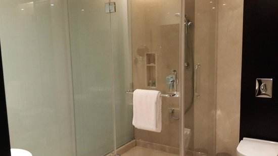 Crowne Plaza Pune City Centre: bathroom