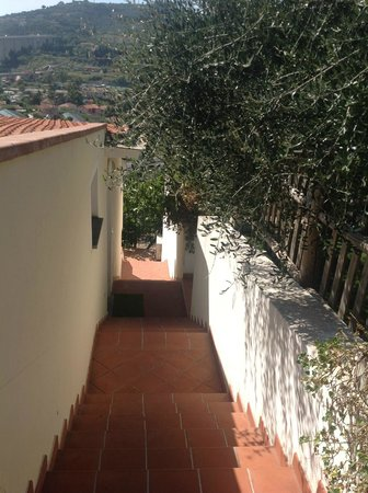 Villa Giada Resort: På väg till receptionen