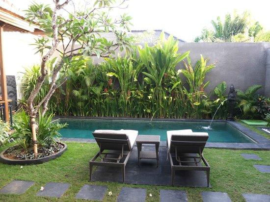 Sandi Agung Villa: In house pool