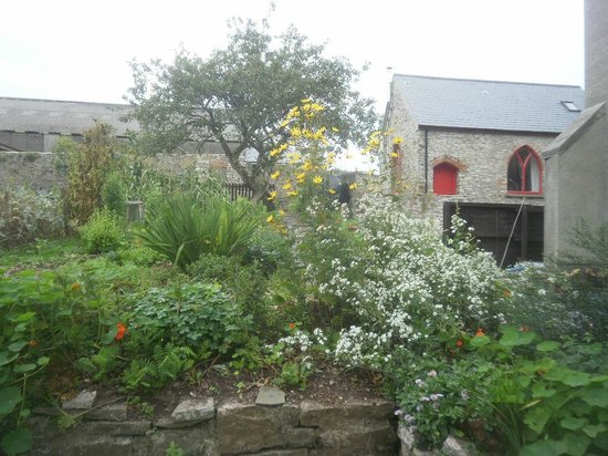 North Down Bed and Breakfast : Side garden