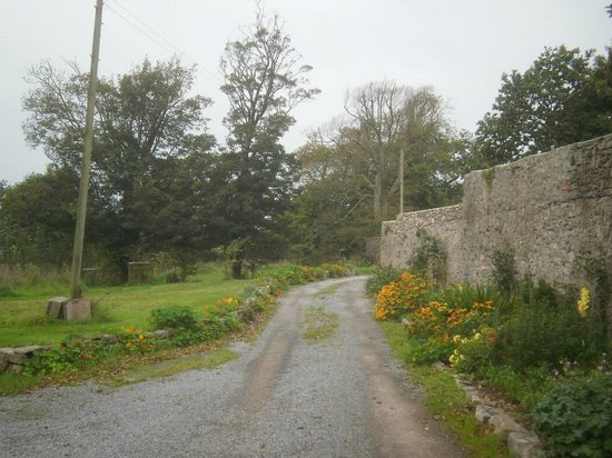 North Down Bed and Breakfast : Short access path to B&B