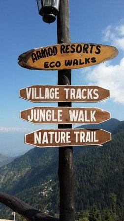 Aamod at Dalhousie: jungle walk, amazing...