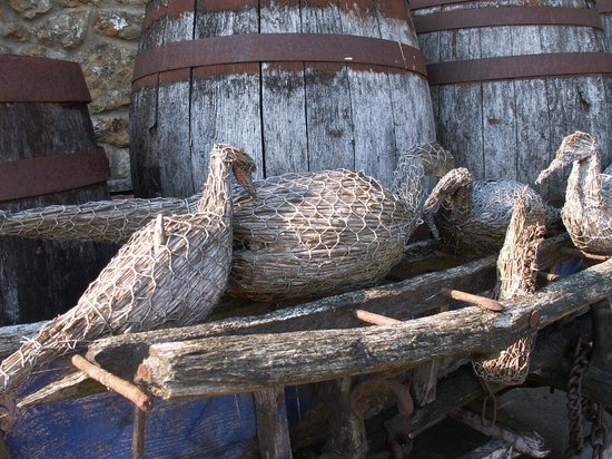 Perry's Cider Brewery and Museum: The local birds