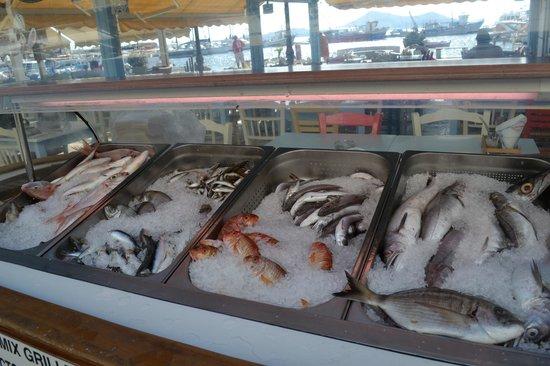 Smyrneiko : Selection of Fish.