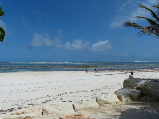 Swahili Beach Resort: Beach at low tide