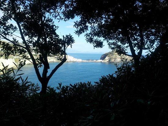 Punta Chiarito Resort Hotel Ristorante : Vista dalla stanza