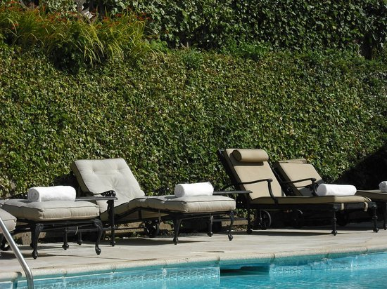 The Old Government House Hotel & Spa : Relax by the pool