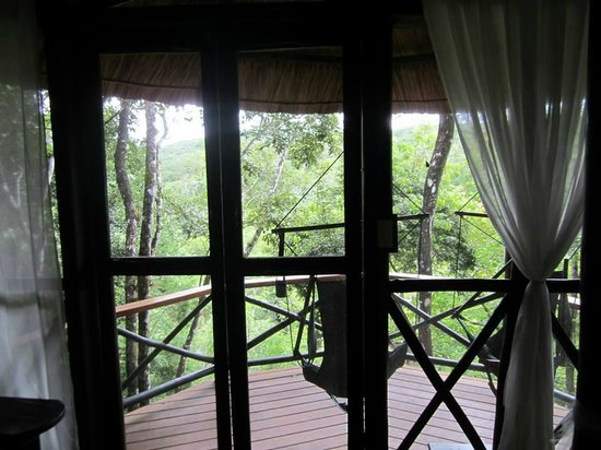 Table Rock Jungle Lodge: The view looking out of our room onto the back porch.