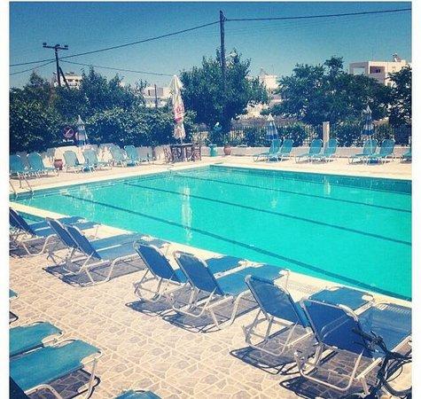 Stergia Apartments: Stergia Pool