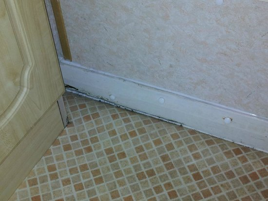Sandaway Beach Holiday Park : Silver Caravan mouldy bathroom